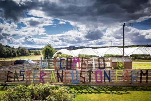 Easter Anguston Farm to reopen to the public
