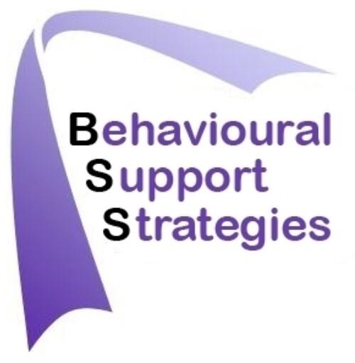BSS-logo-new.JPG
