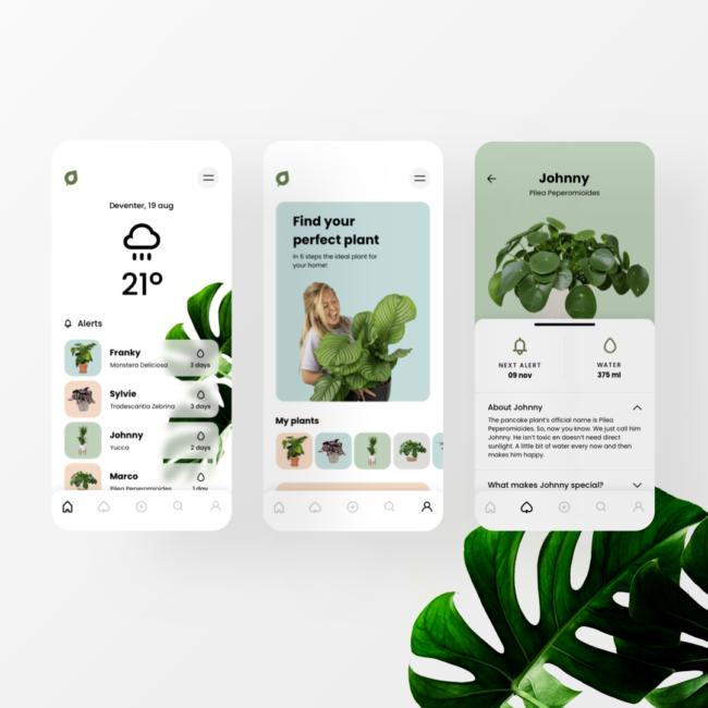 Plantsome App concept Instagram