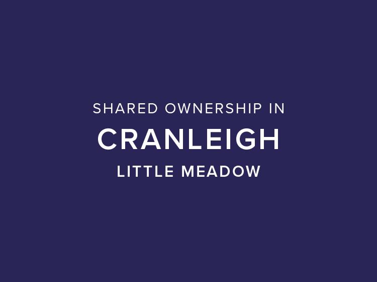 Little Meadow, Cranleigh