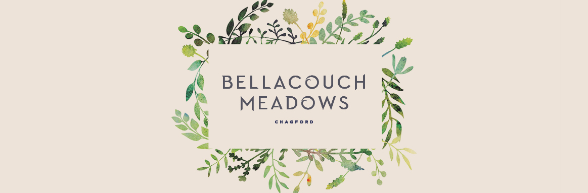 Bellacouch Meadows
