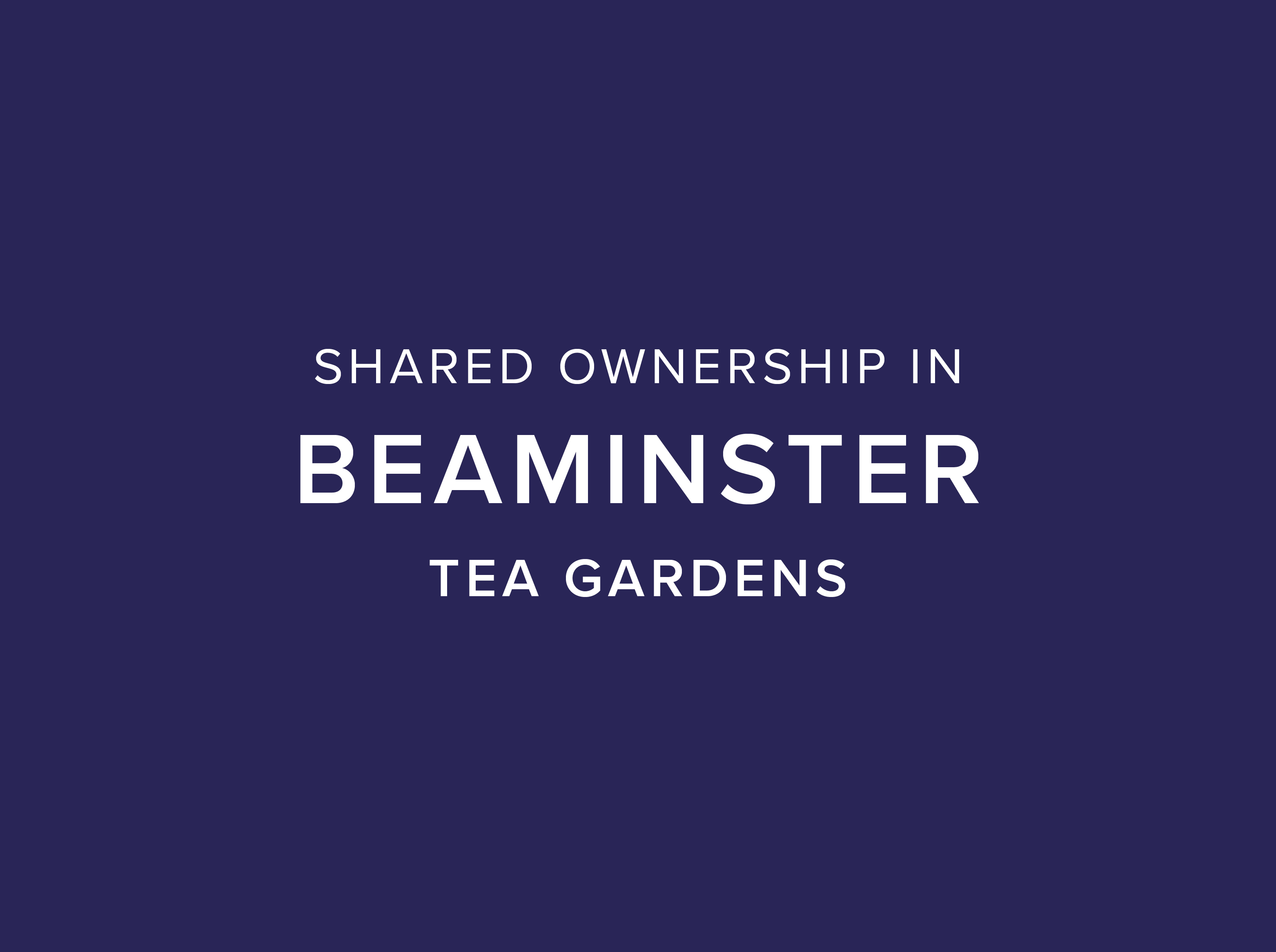 Tea Gardens, Beaminster