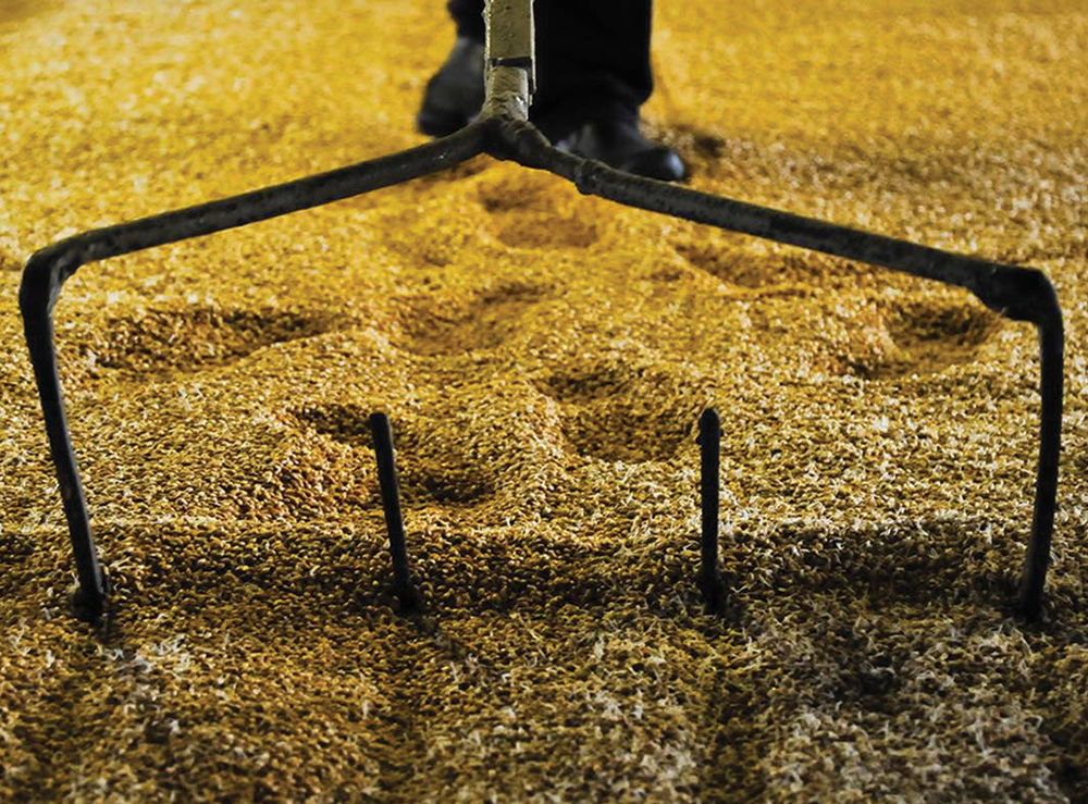Ballantine's Scotch Whisky Malting Process