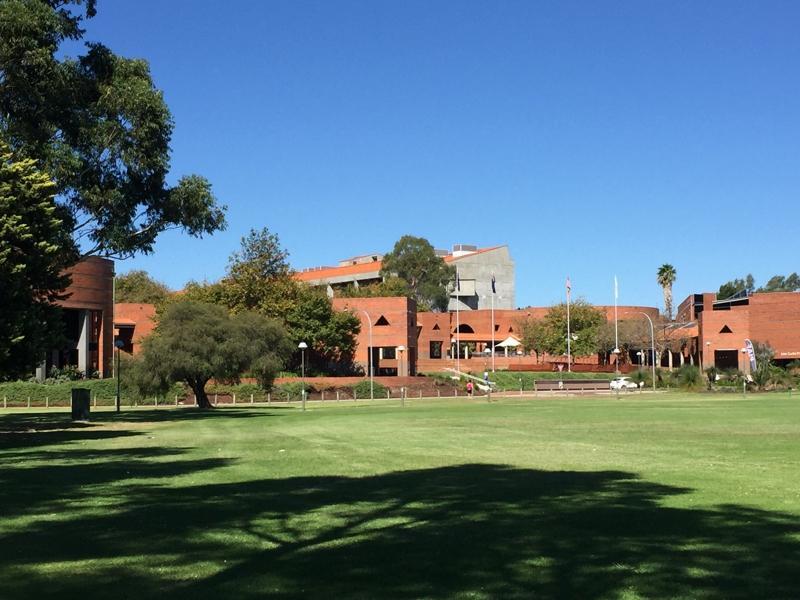 Blå himmel og gressplen foran universitetsbygninger