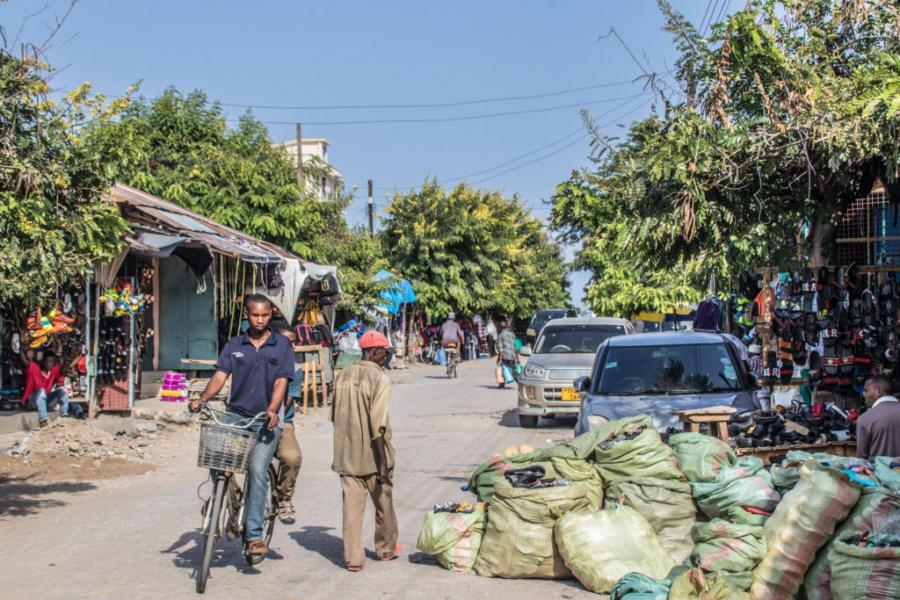 Tanzaniatur 1