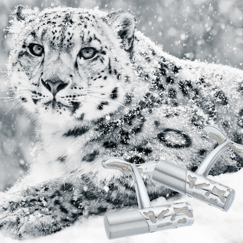 Pair of biiju's solid silver Camouflage Cufflinks alongside a beautiful snow leopard which was their inspiration