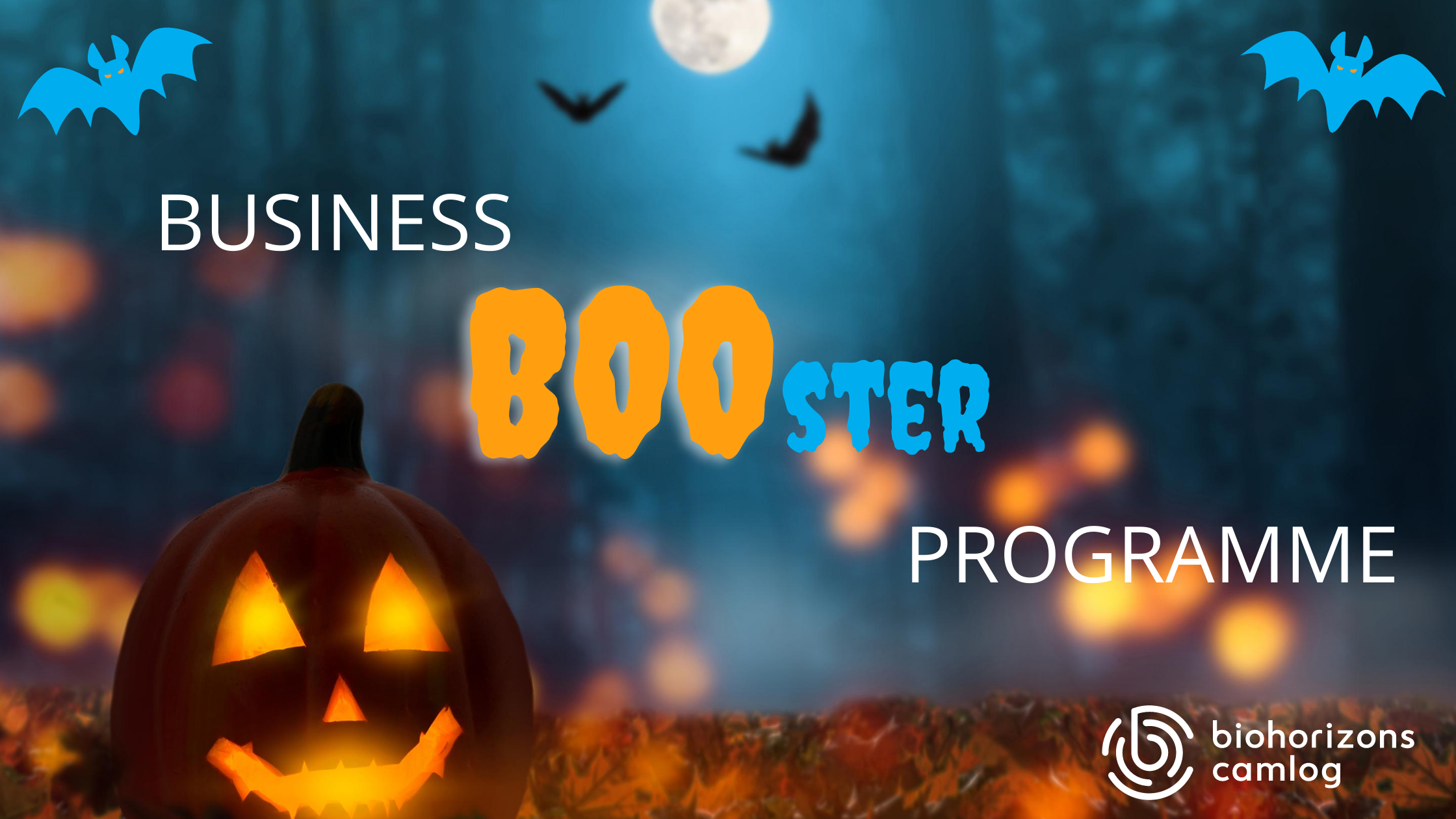 Business 'BOO'ster Programme - Session 1: Create a business that is there for you
