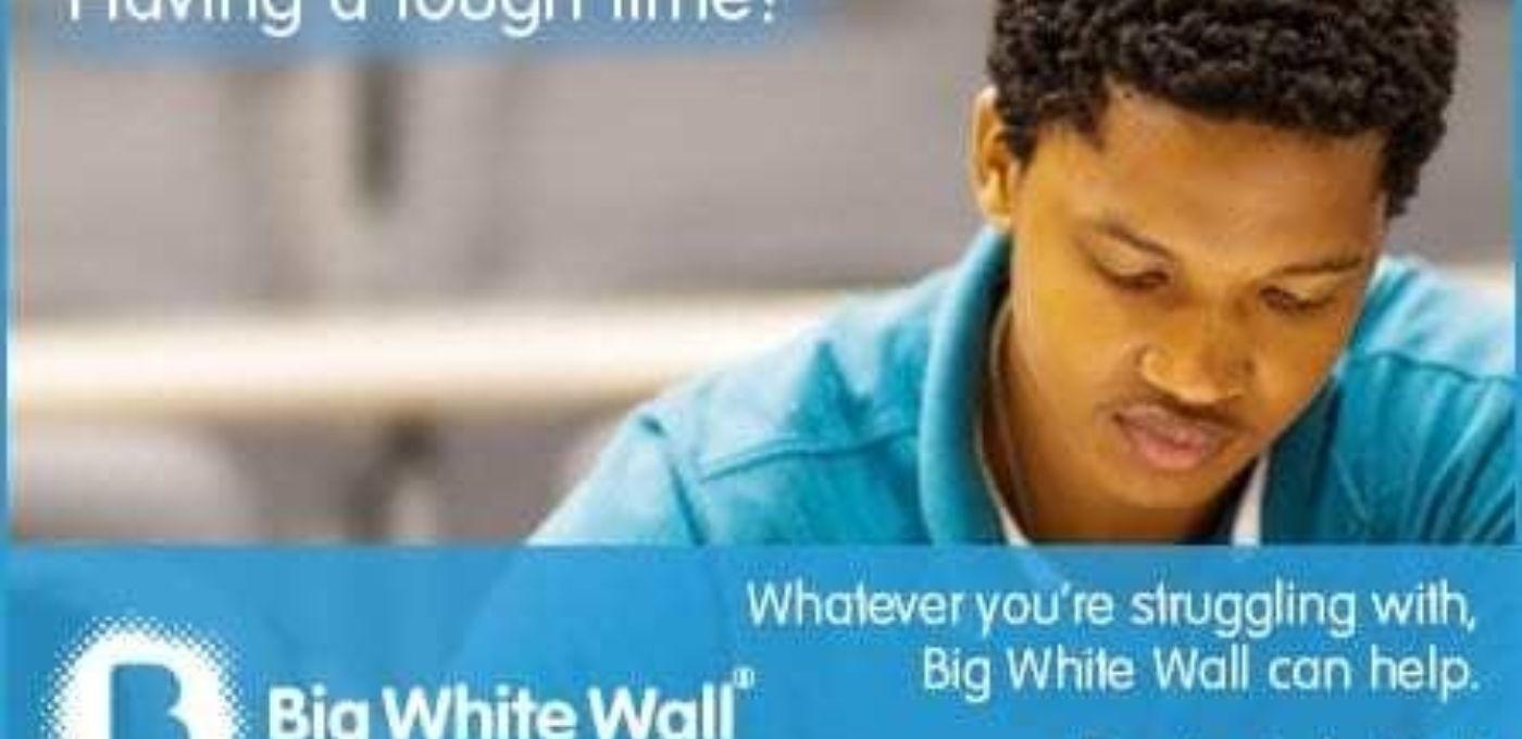 Big20 White20 Wall 1