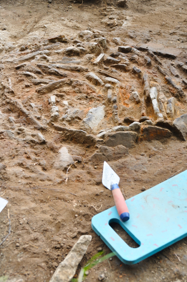 Archaeology Dig 2021 3