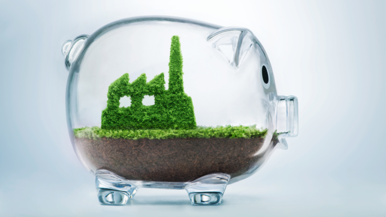 Why You Need to Incorporate Sustainability in Your E-Commerce Business Plan
