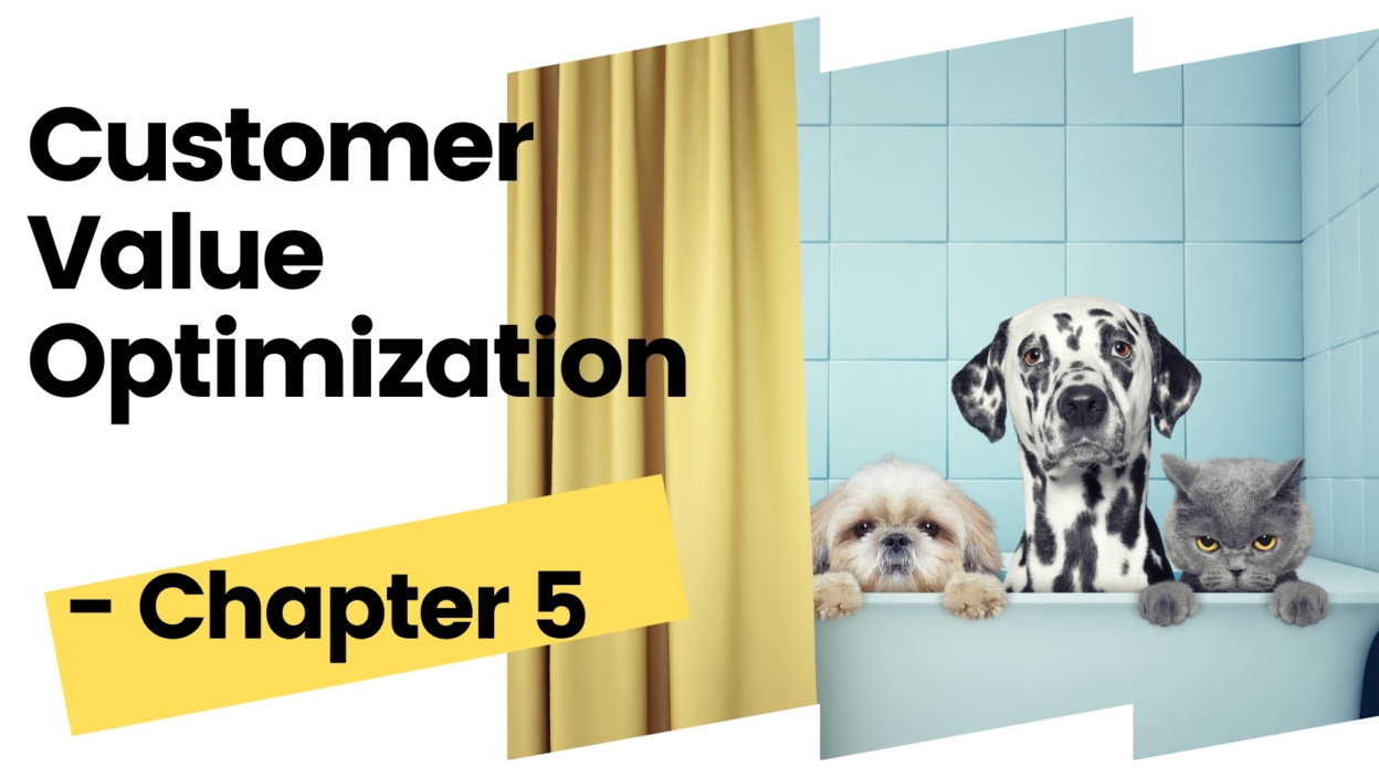 The Ultimate CVO Guide – Customer Value Optimization Methodology Part 3