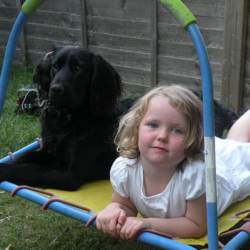 BorrowMyDoggy dog with toddler