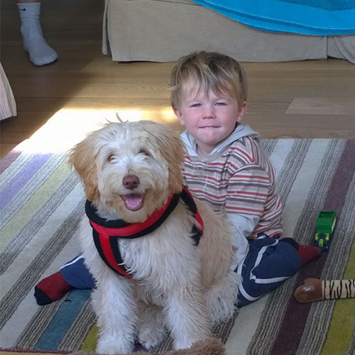 BorrowMyDoggy dog with children