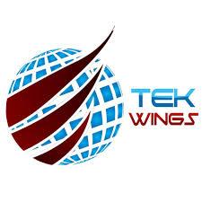 TEKWINGS LLC