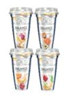Hollandia Balance – jogurtová smoothie