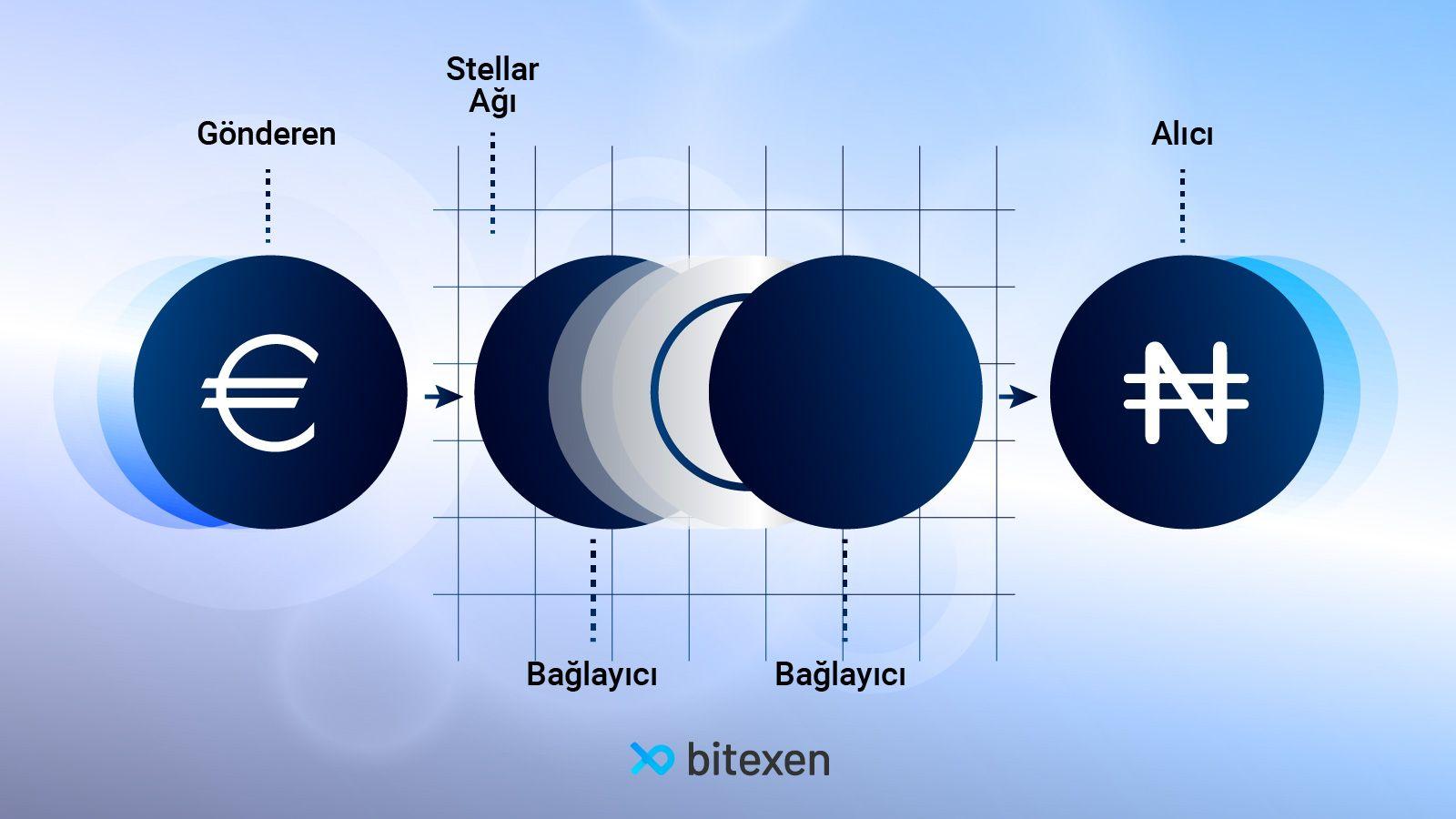 stellar-1.jpg