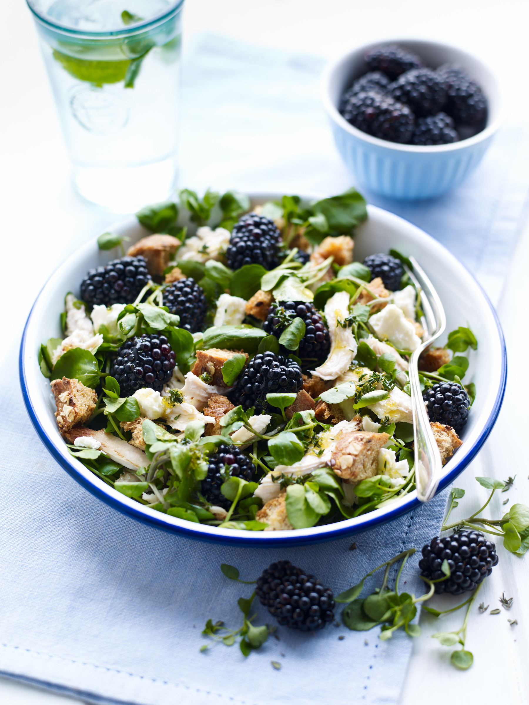 Berry World Chicken and Blackberry Salad 75isq2au2