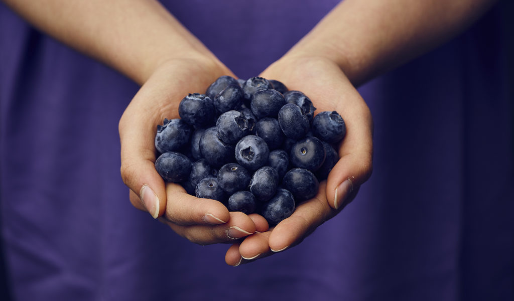 Woman's hands holding blueberries