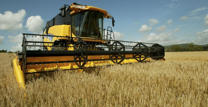 EU cereal harvest drops due to summer drought