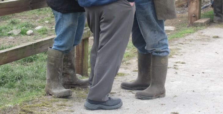 One UK farmer a week takes their own life, rural mental health charity warns