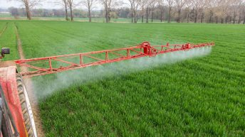McIntyre: 'What the big pesticides report should have said'