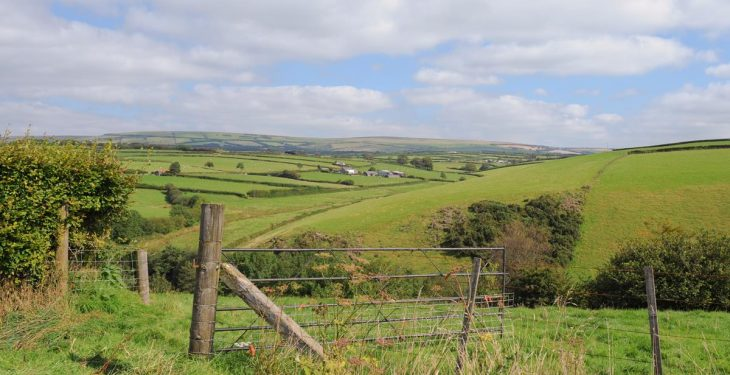 'Warm words no substitute to affirmative action' on farm tenancies