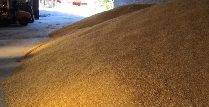 Glanbia advance payment scheme opens to grain grower members