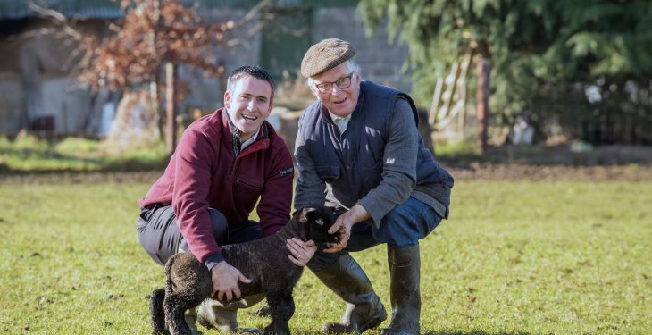 'Even quiet, docile dogs can turn into killers'