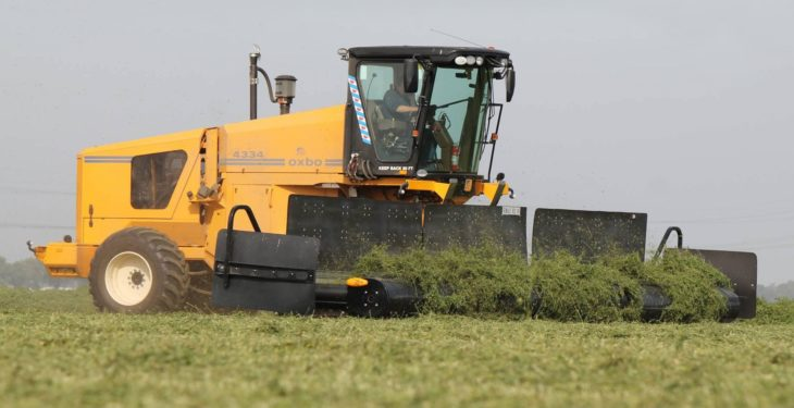 Have you ever seen a self-propelled silage 'merger'?