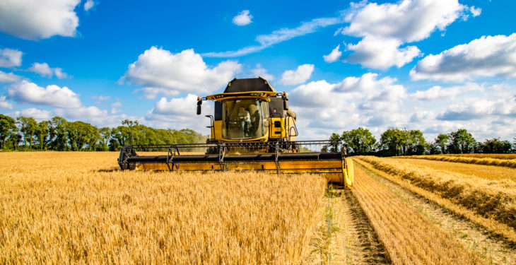 Cereals experts sought to join forces with AHDB