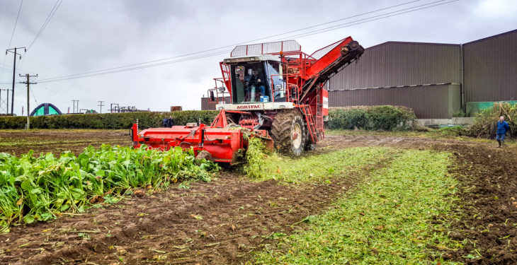 For sale: Ireland's most famous self-propelled beet harvester