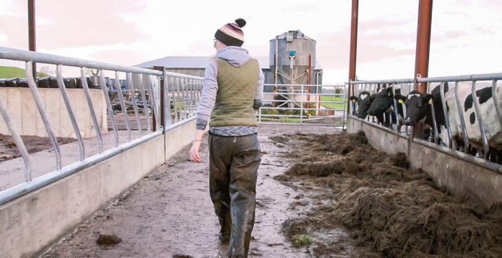 3.5% pay rise on the cards for Northern farm workers