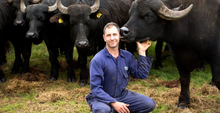 TV producers looking to dig into Northern Irish farming life
