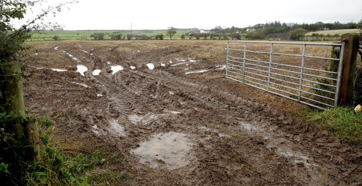 Policies needed to help farmers cope with volatile weather – NFU