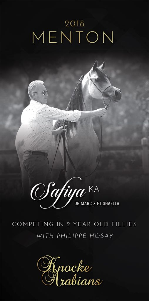 Safiya KA - Junior Fillies - Philippe Hosay