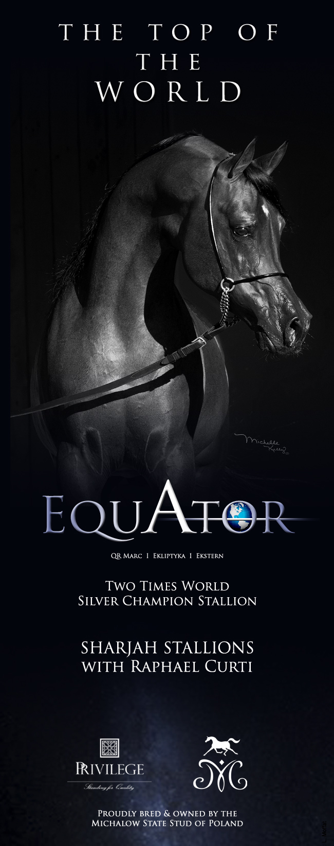 Equator - Sharjah 2018 - Senior Stallions With Mr. Raphael Curti
