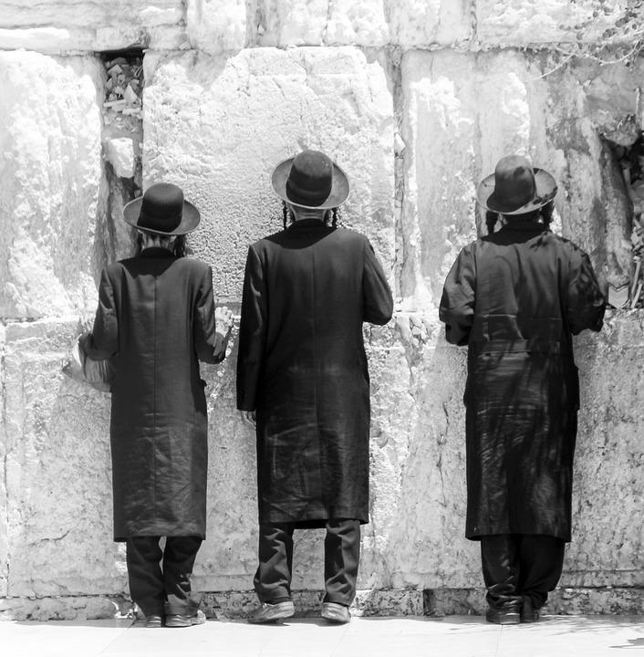 מאפייני החברה החרדית בישראל
