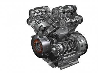 Face to face: Suzuki V Strom 10008