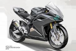 Honda CBR300RR Tokio 1