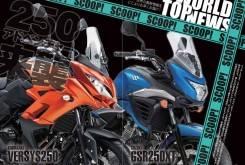 Kawasaki Versys 250 Suzuki V Strom 250