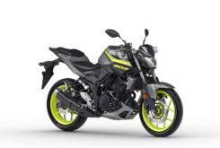 Yamaha MT 03 2018 14