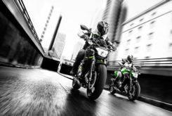 Kawasaki Z650 2018 36