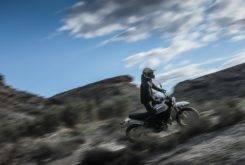 Ducati Scrambler Desert Sled 26