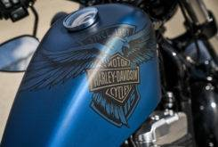 Harley Davidson Sportster Forty Eight 115 Aniversario 2018 08