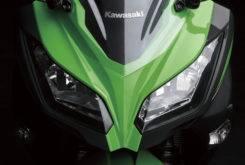 Kawasaki Ninja 300 ABS d