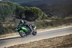 Kawasaki ZZR1400 Performance Sport 2018 05