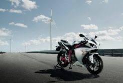 Yamaha YZF R1 2009 12