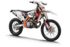 KTM 250 EXC TPI Six Days 2019 07
