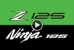 Kawasaki Z125 Ninja 125 2019 logos play