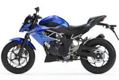 Kawasaki Z125 2019 23